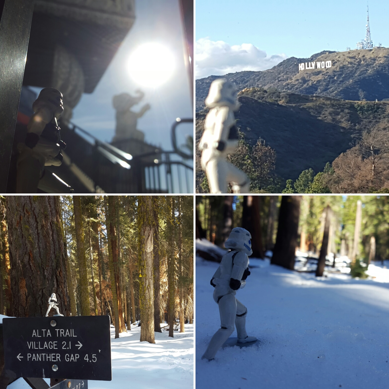Dave in Hollywood and at Sequoia National Park