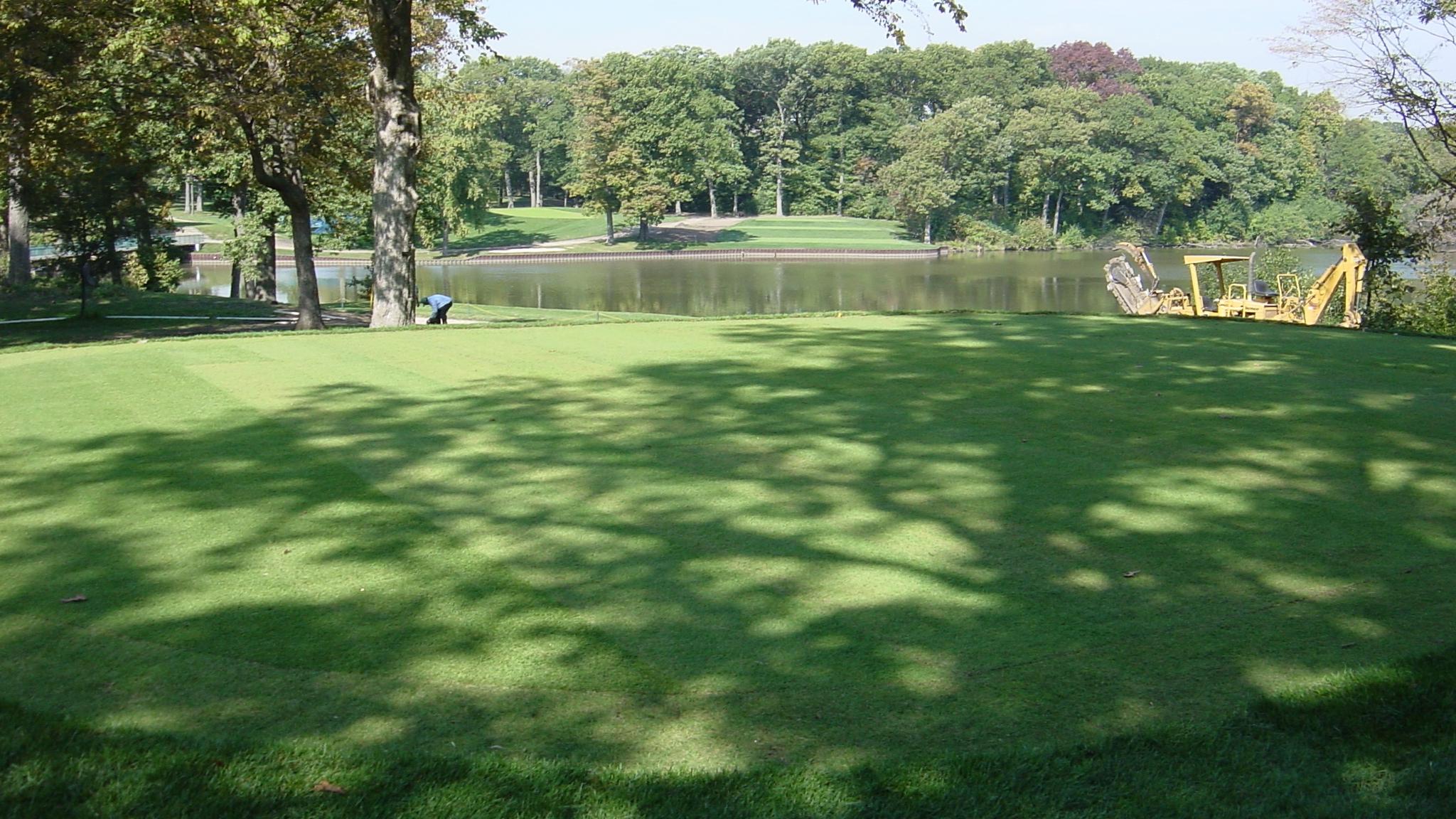 Bentgrass Putting Green
