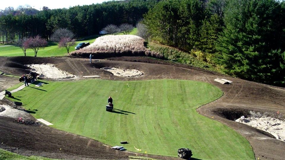 Bentgrass install before...