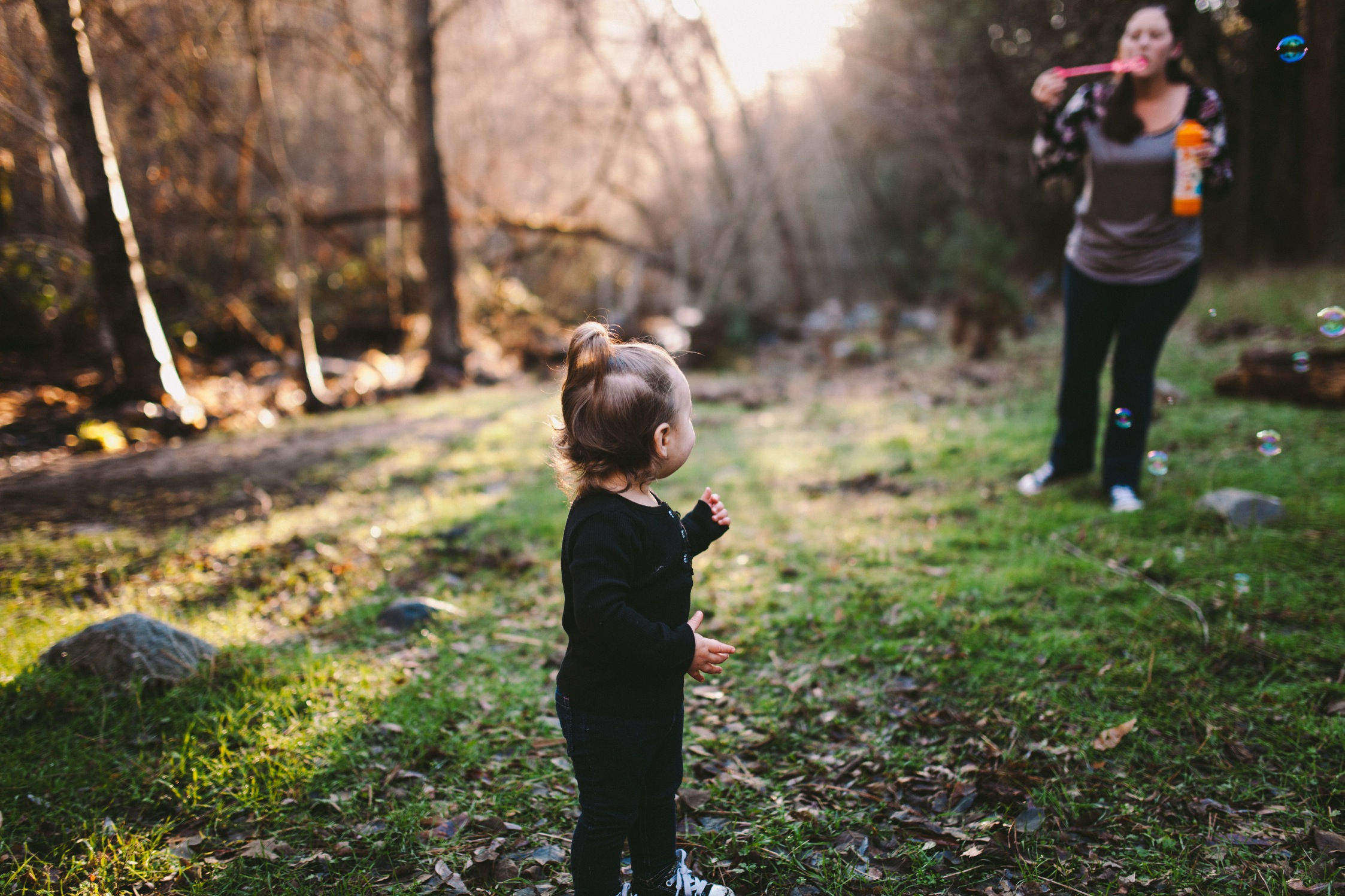 Stanislaus Forest, Tuolumne County Family Photography Session 19.jpg
