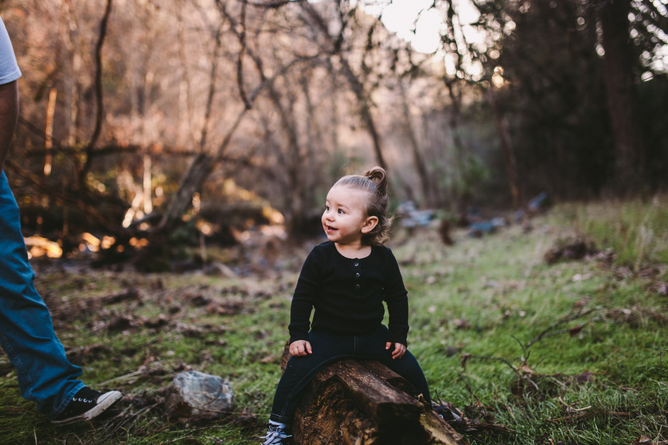 Stanislaus Forest, Tuolumne County Family Photography Session 27.jpg