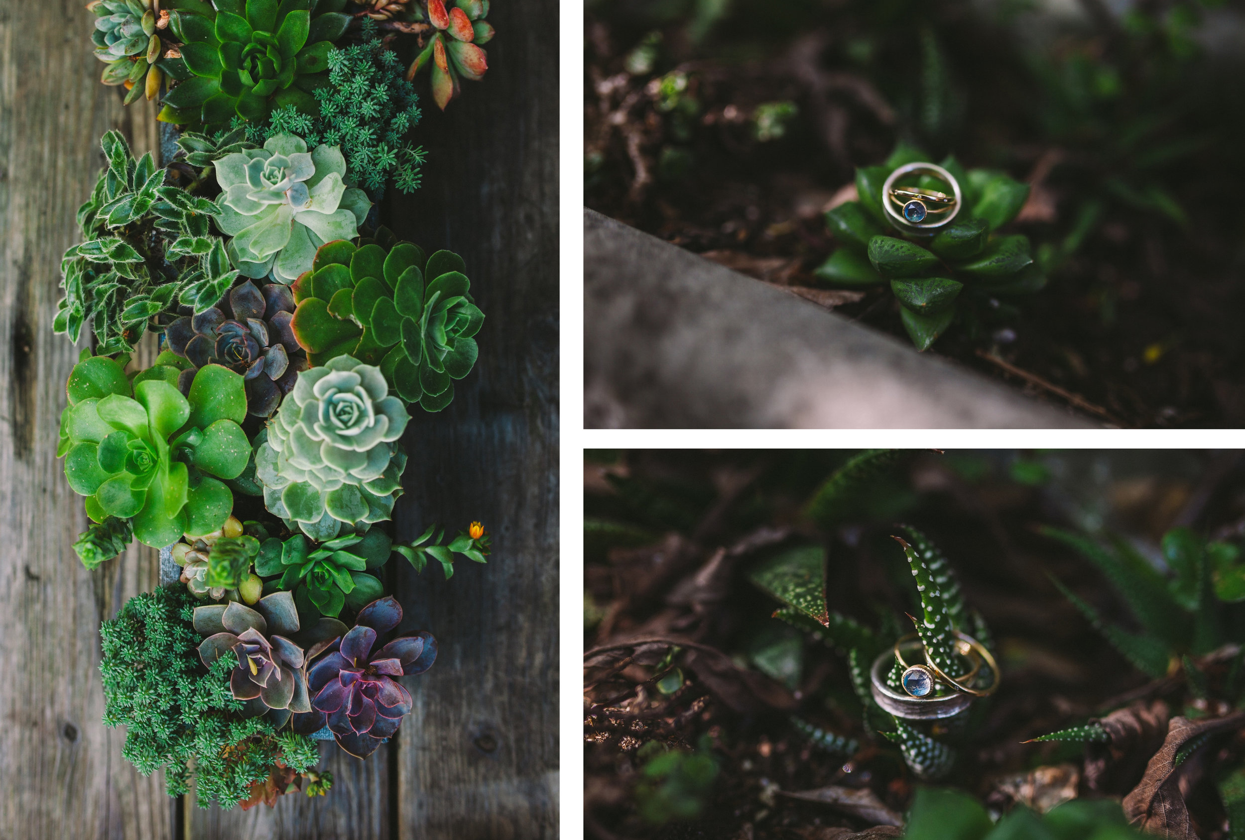 Moonstone Engagement Ring and Wedding Bands in Succulent Plants