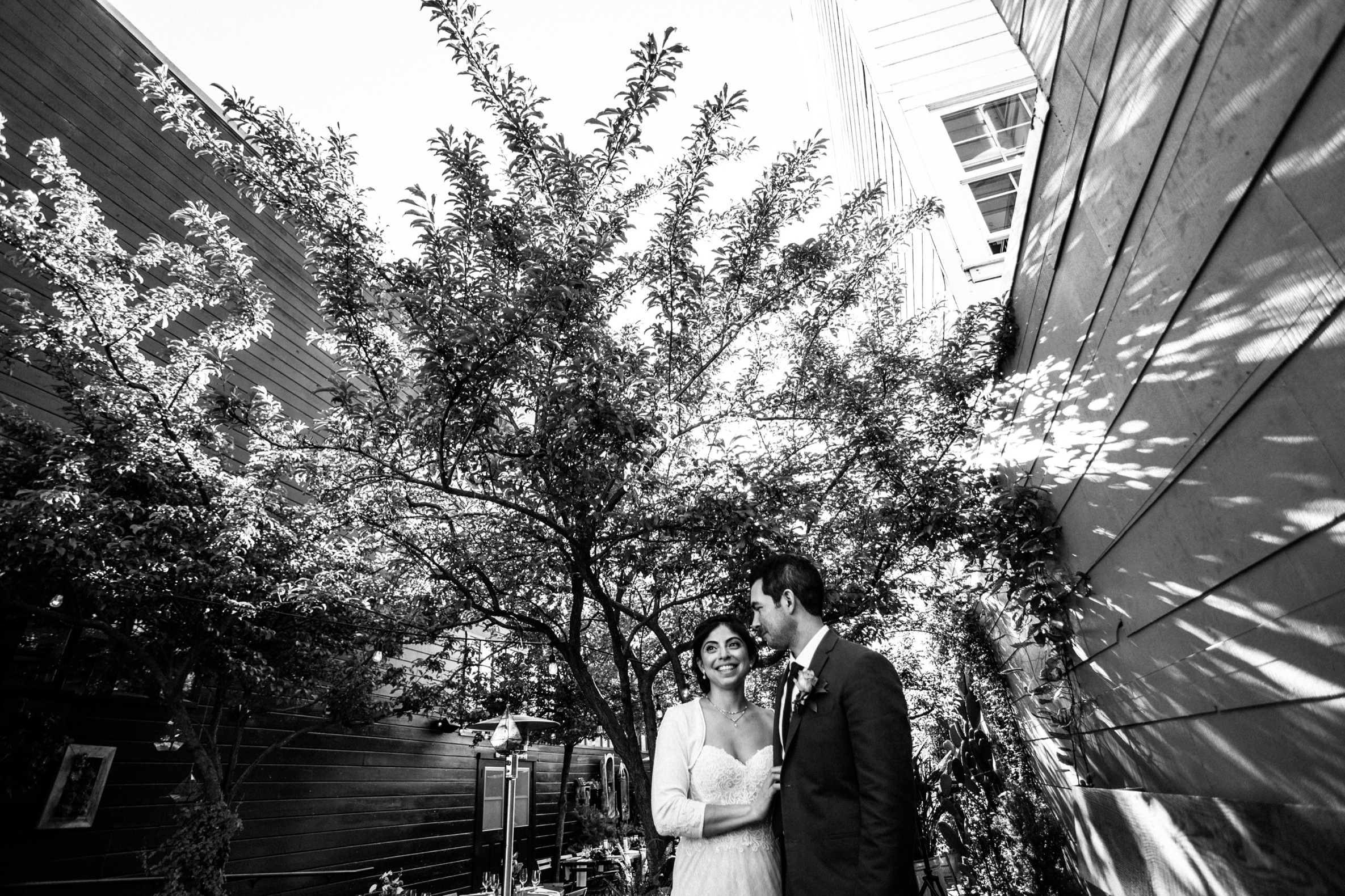 San Francisco City Hall & Stable Cafe Wedding Photography 416.jpg