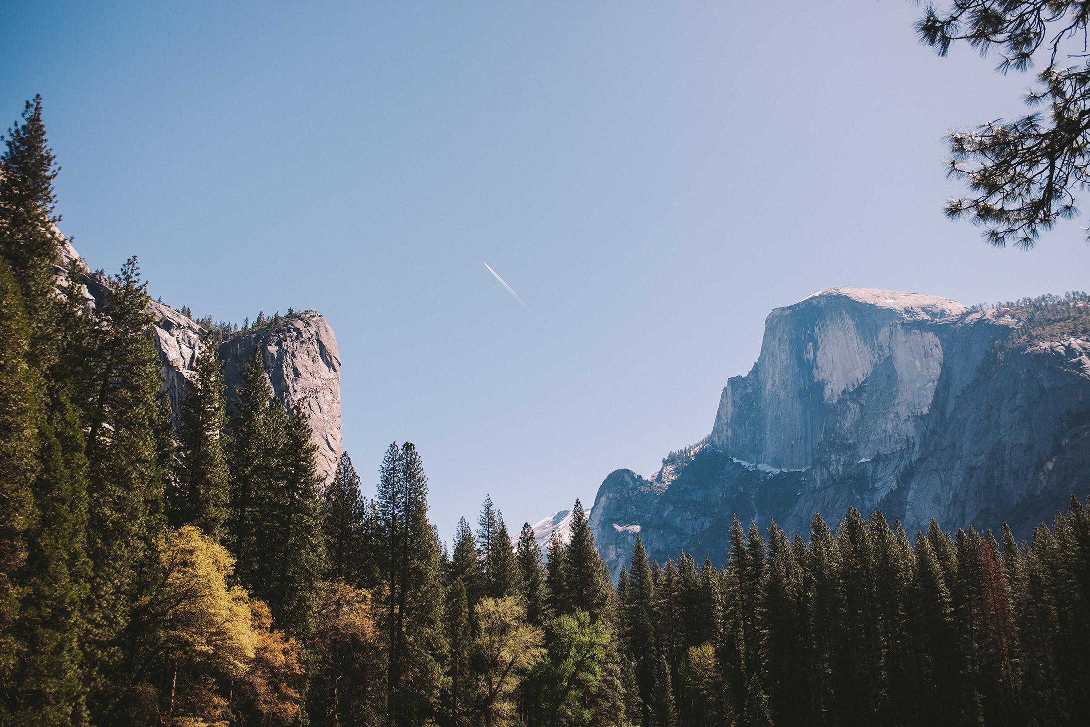 Yosemite Half Dome with Treeline.jpg
