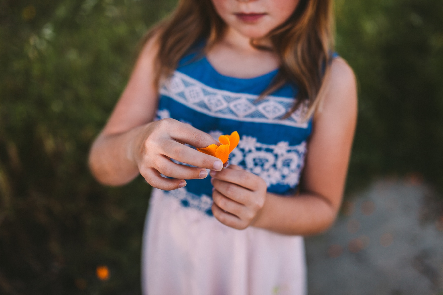 Child looking at California Poppy Family Lifestyle Photography