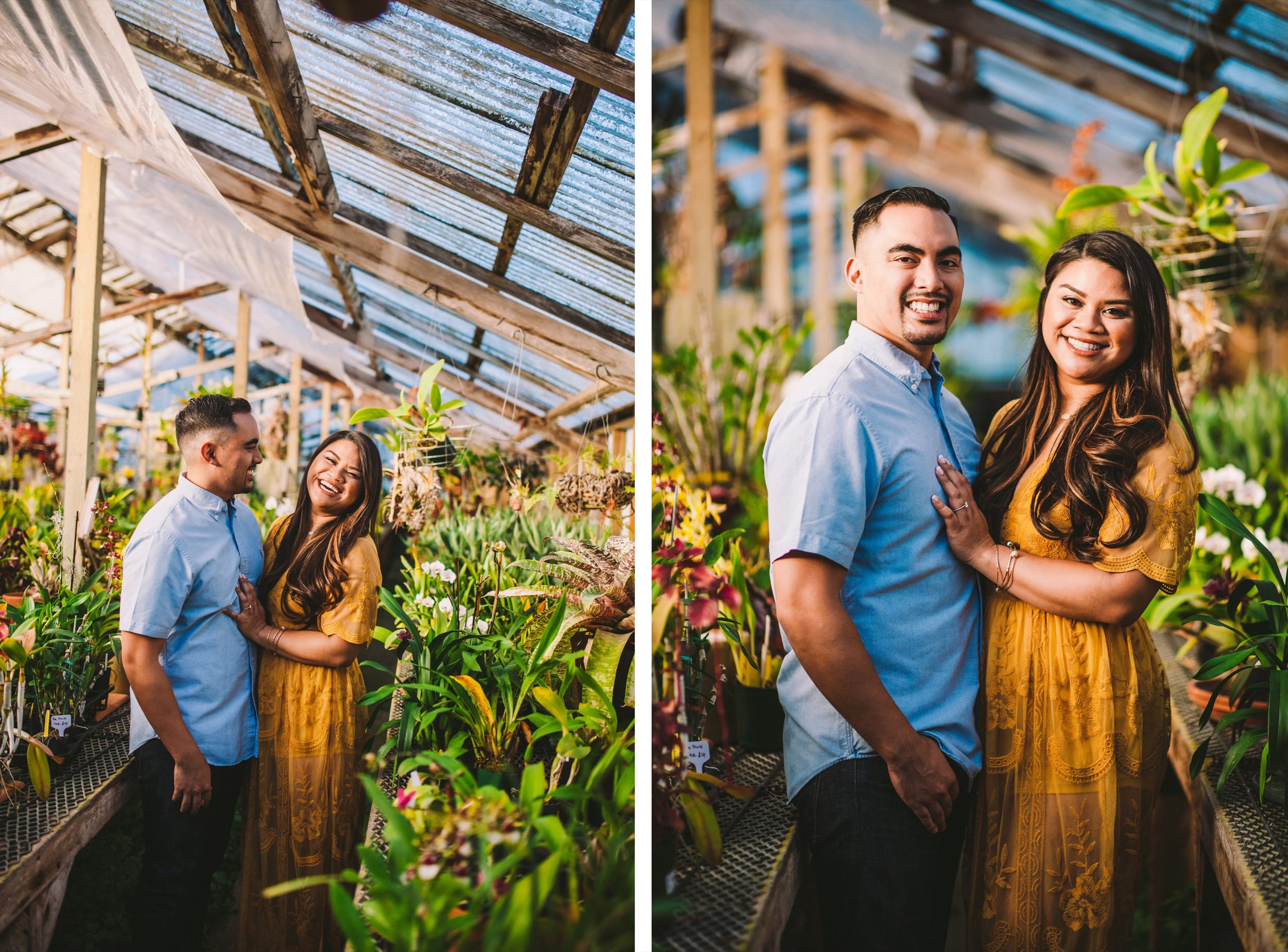 Shelldance Orchid Gardens Greenhouse Engagement Session Pacifica 32.jpg