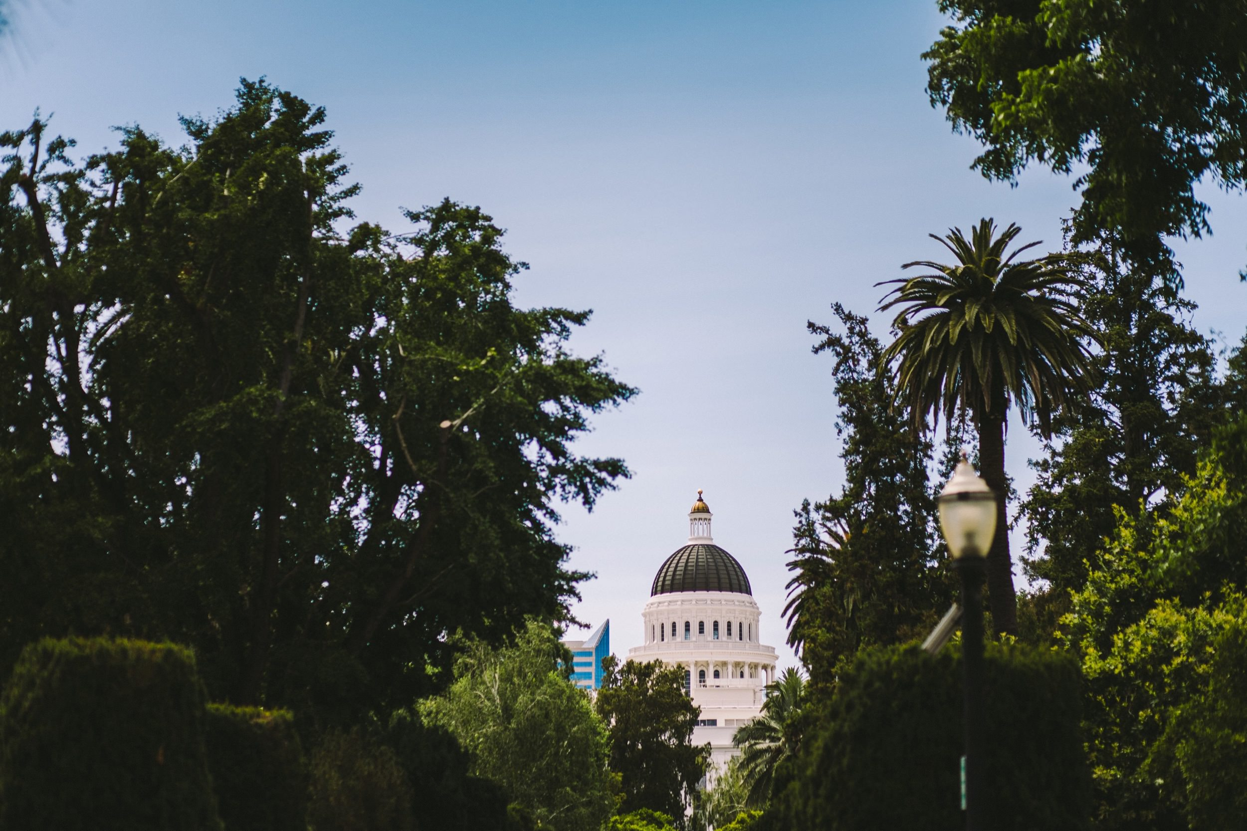 Sacramento Sutter Club & Capitol Building Wedding-2.jpg