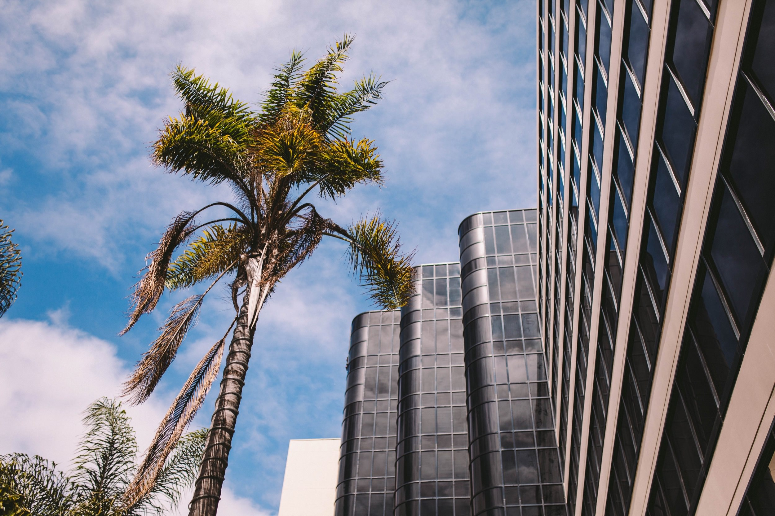 1 Renaissance Hotel Downtown Long Beach Wedding Photography 1.jpg