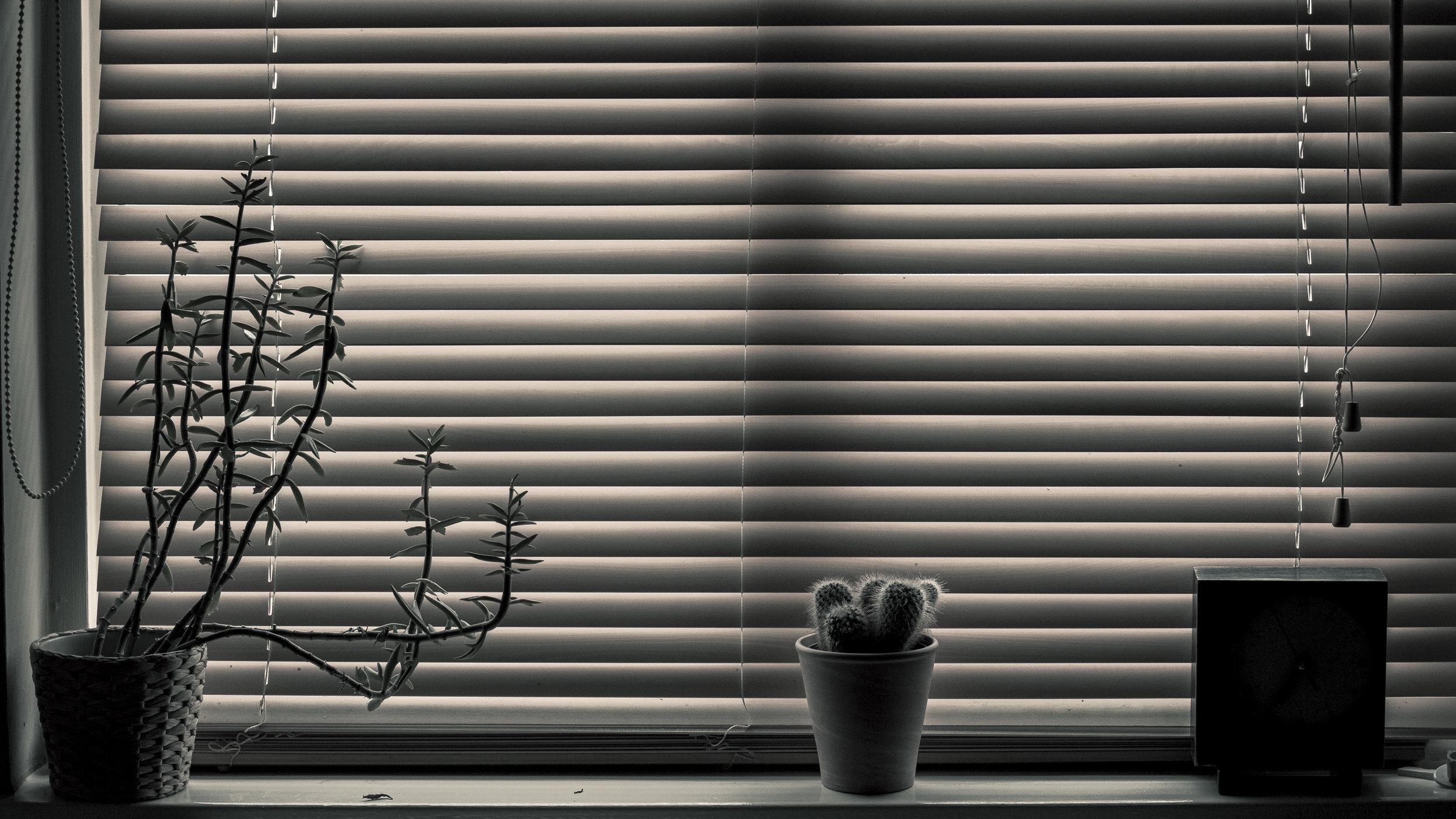 Still life-27.jpg