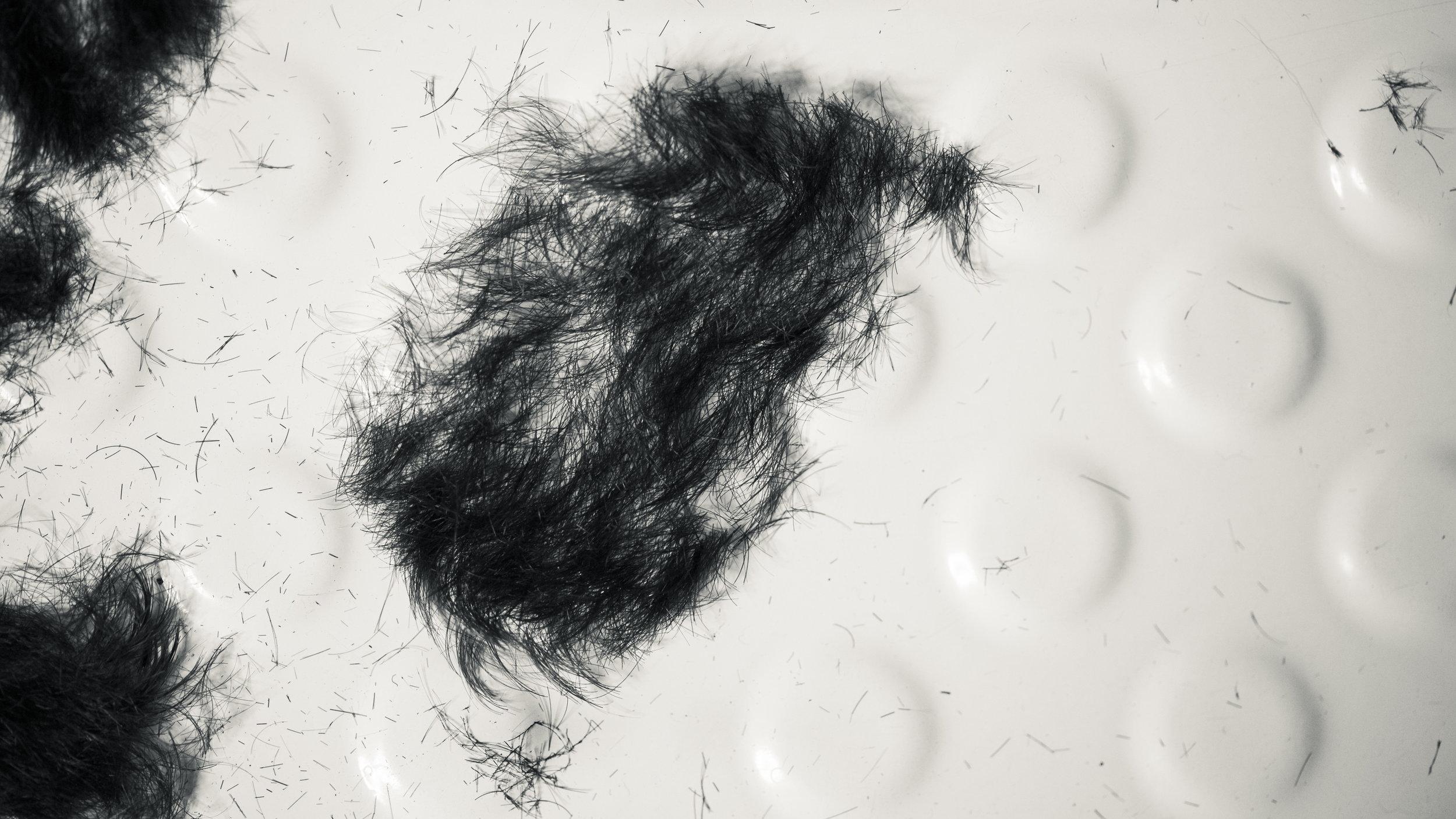 RRodner-Hair cutting-8.jpg