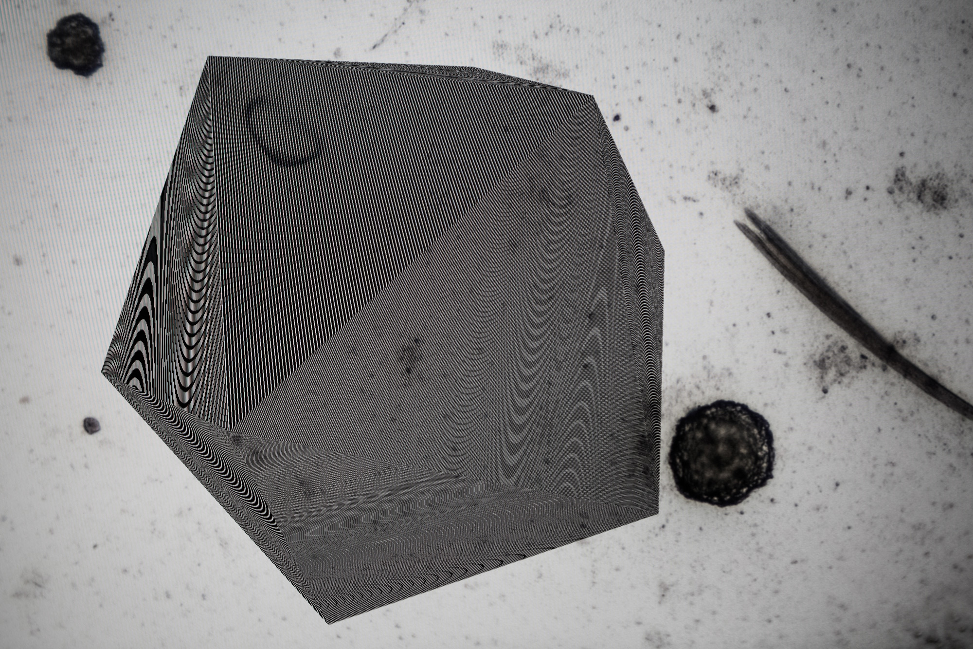 RRodner-Icosahedron-microscopic-2.jpg