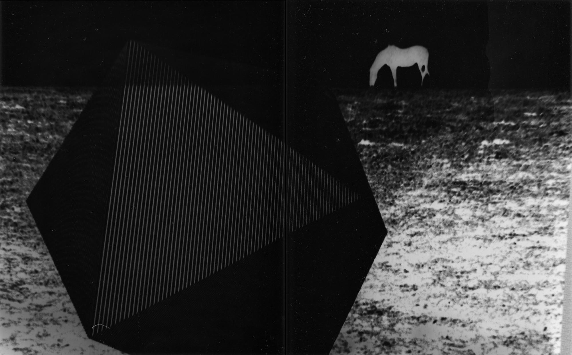 RRodner-Lumin-HorseAndIcosahedron.jpg