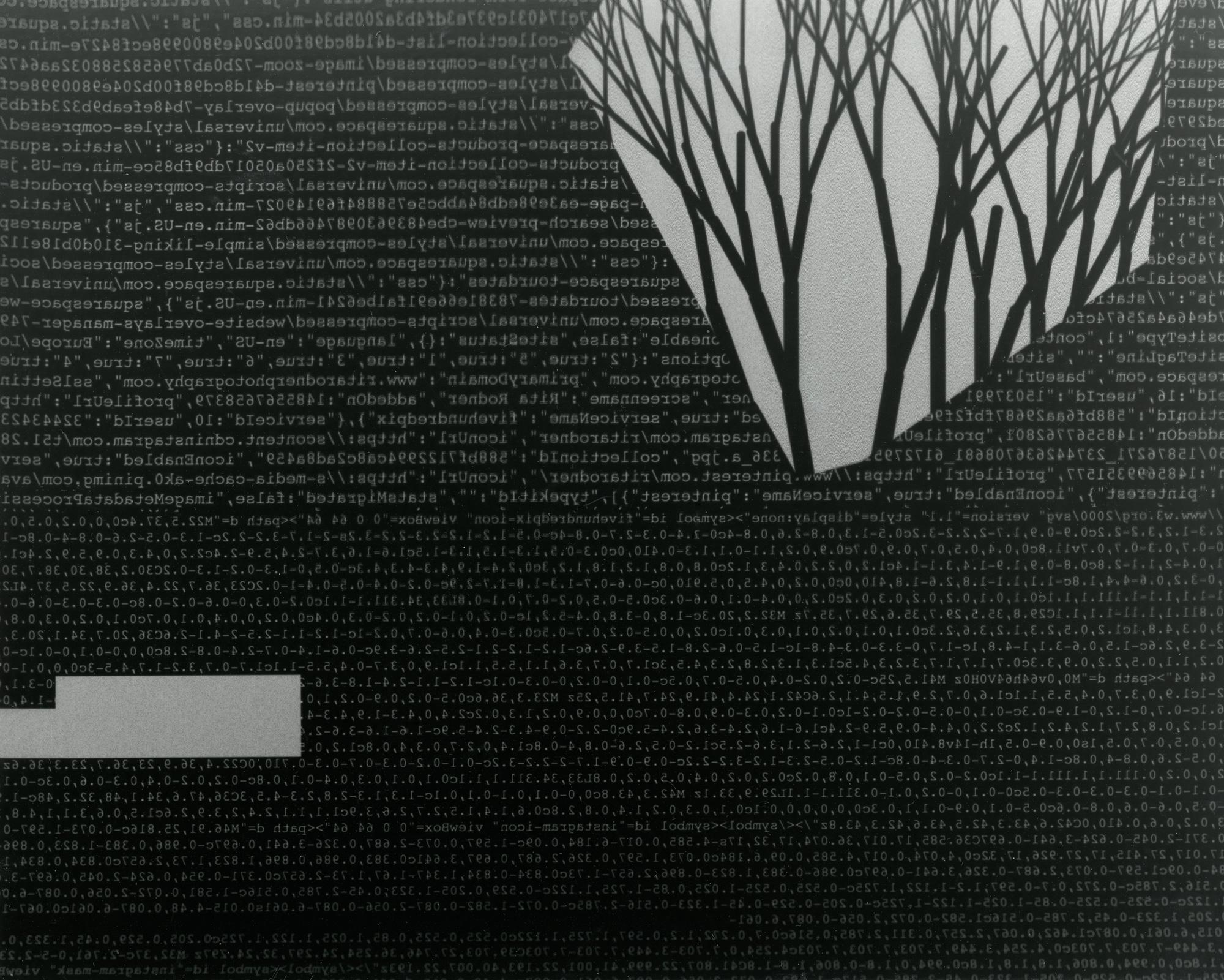 Code-tree.jpg