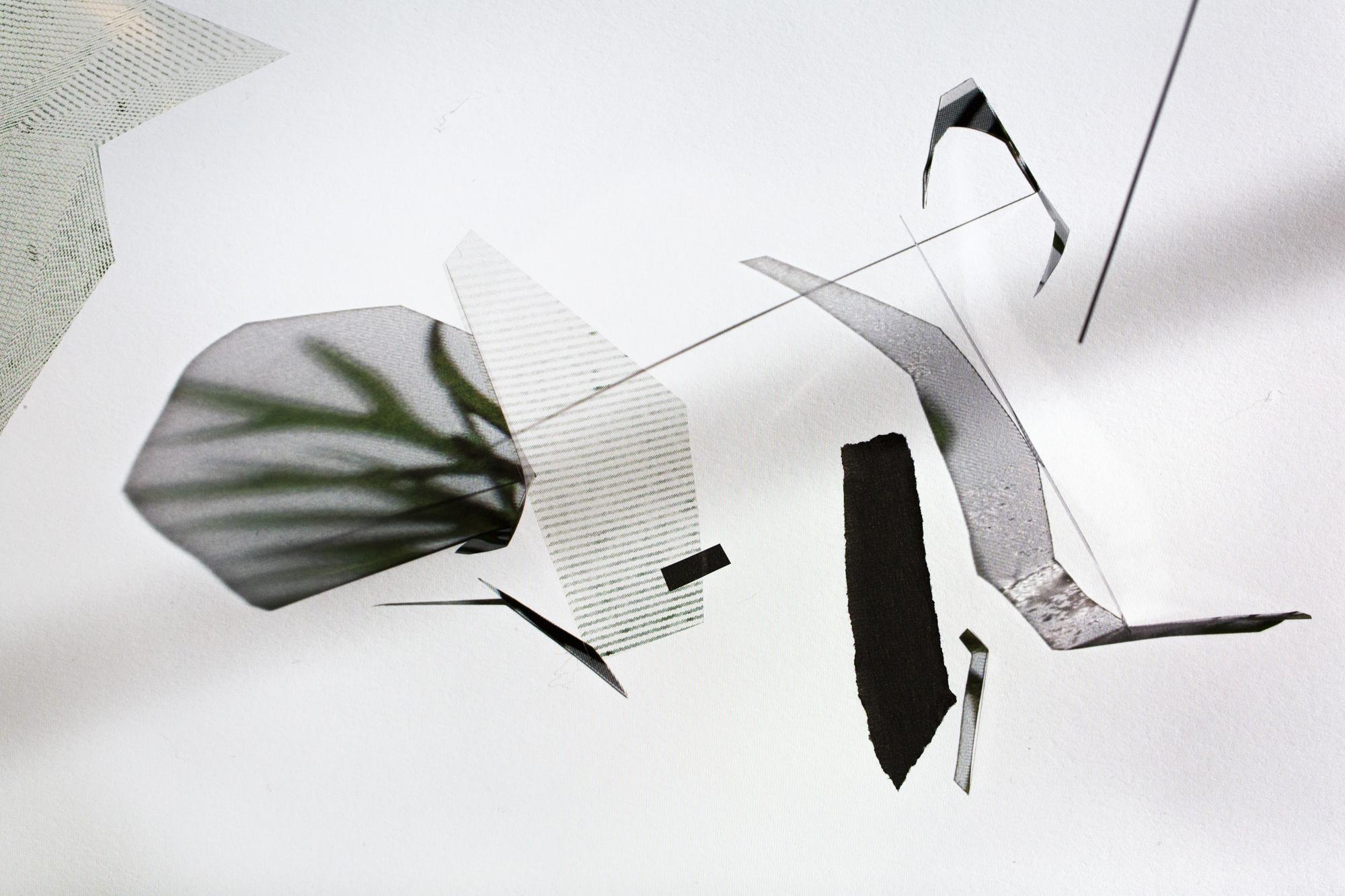 RRodner-Dichotomies-cutouts-4.jpg