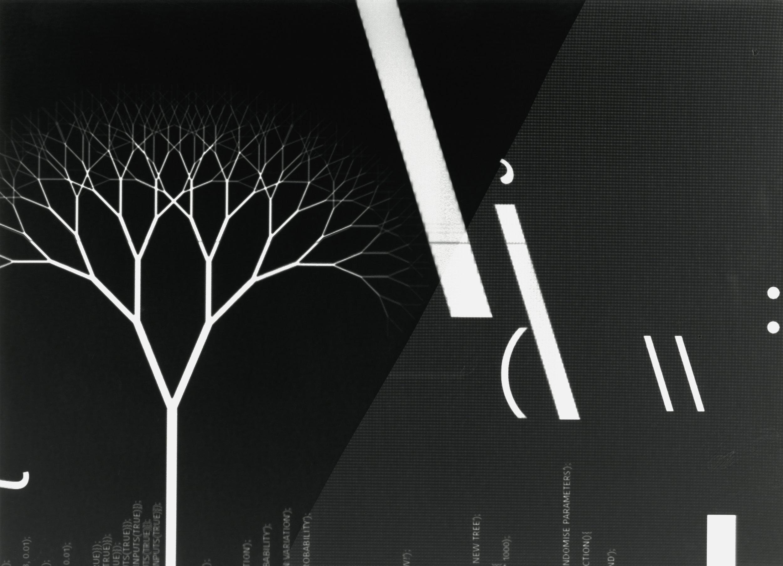 RR-Photogram-code-tree.jpg