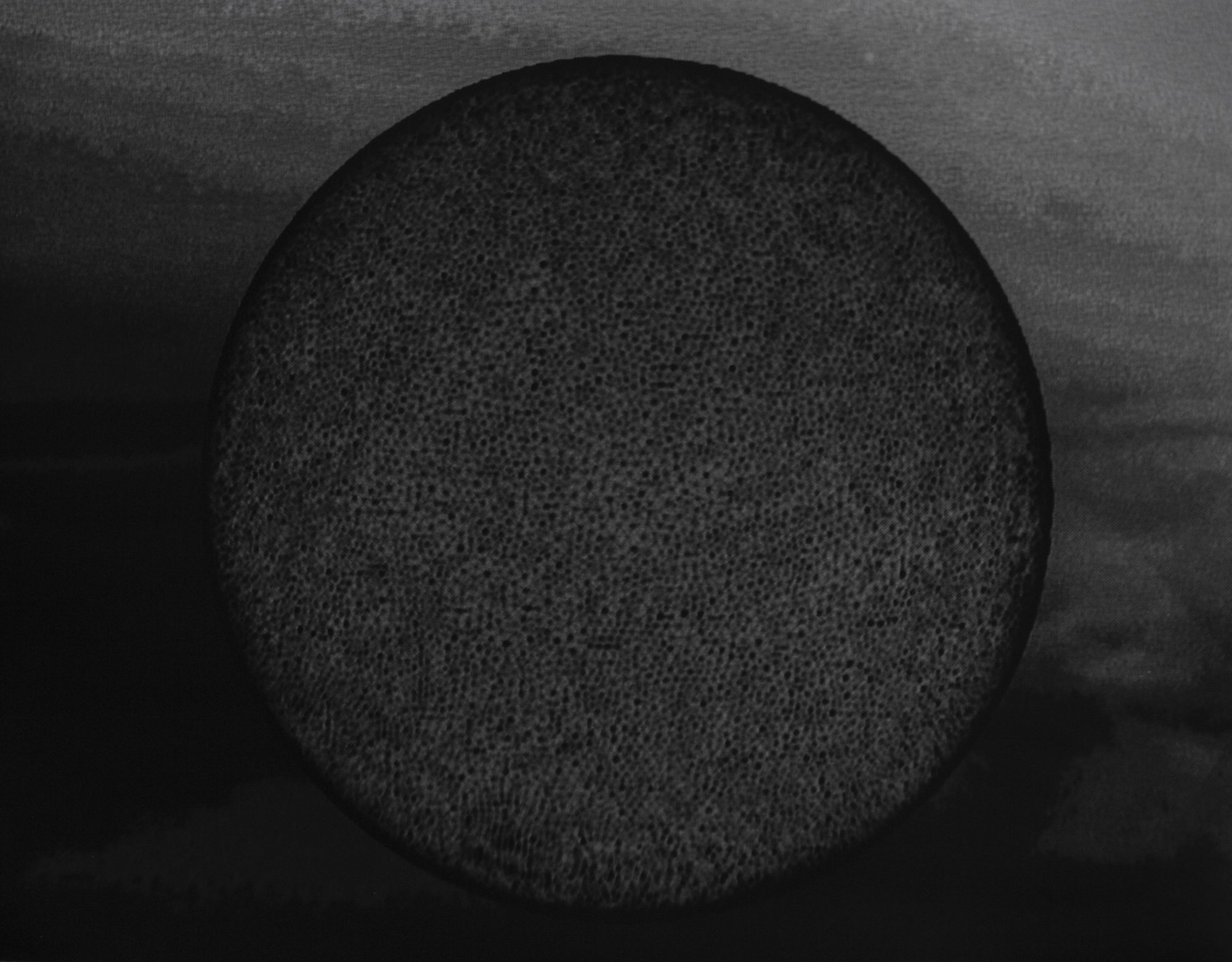 RRodner-Dichotomies-code landscapes-6.jpg