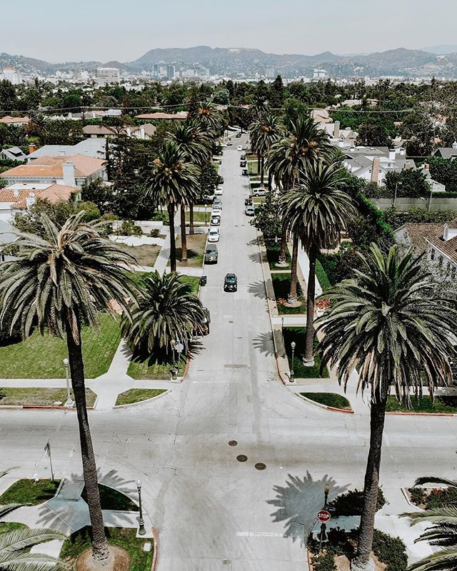 + mood 🌴 ——— #hollywood #palmtrees  #streetphotography  #weekendvibes #creative #weekend #la #vibes #lakers  #lavibes  #photography  #vacation #travel #visitla  #travelphotography  #adventure #losangeles #moodygrams  #conquer_la #visitcalifornia  #drone #mavicair #shooters #gramslayers #visualambassadors #losangeles_city #losangelesgrammers