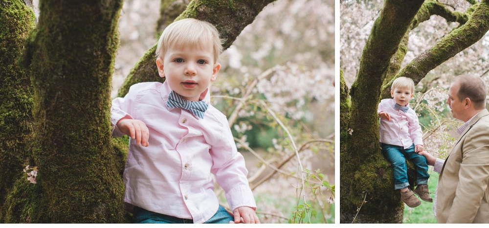 spring_Family_Lifestyle_Portrait_Session_Seattle_Arboretum_cherry_blossoms 2.jpg