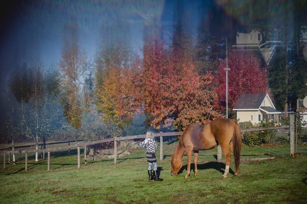 family_farm_fall_lifestyle_enumclaw_photographer 17.jpg