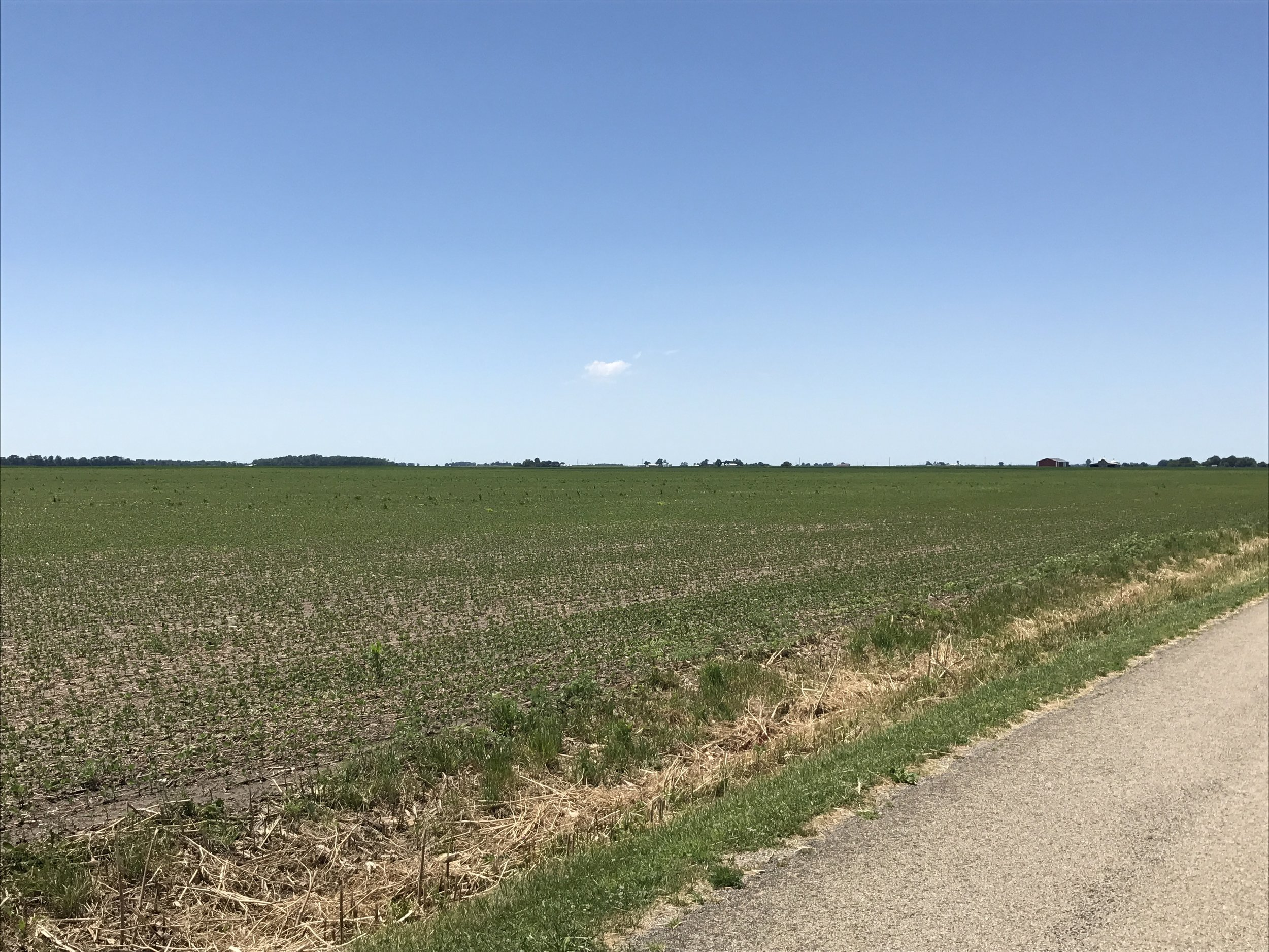 North side of the Kansas 150 Farm from the northeast corner looking southwest.