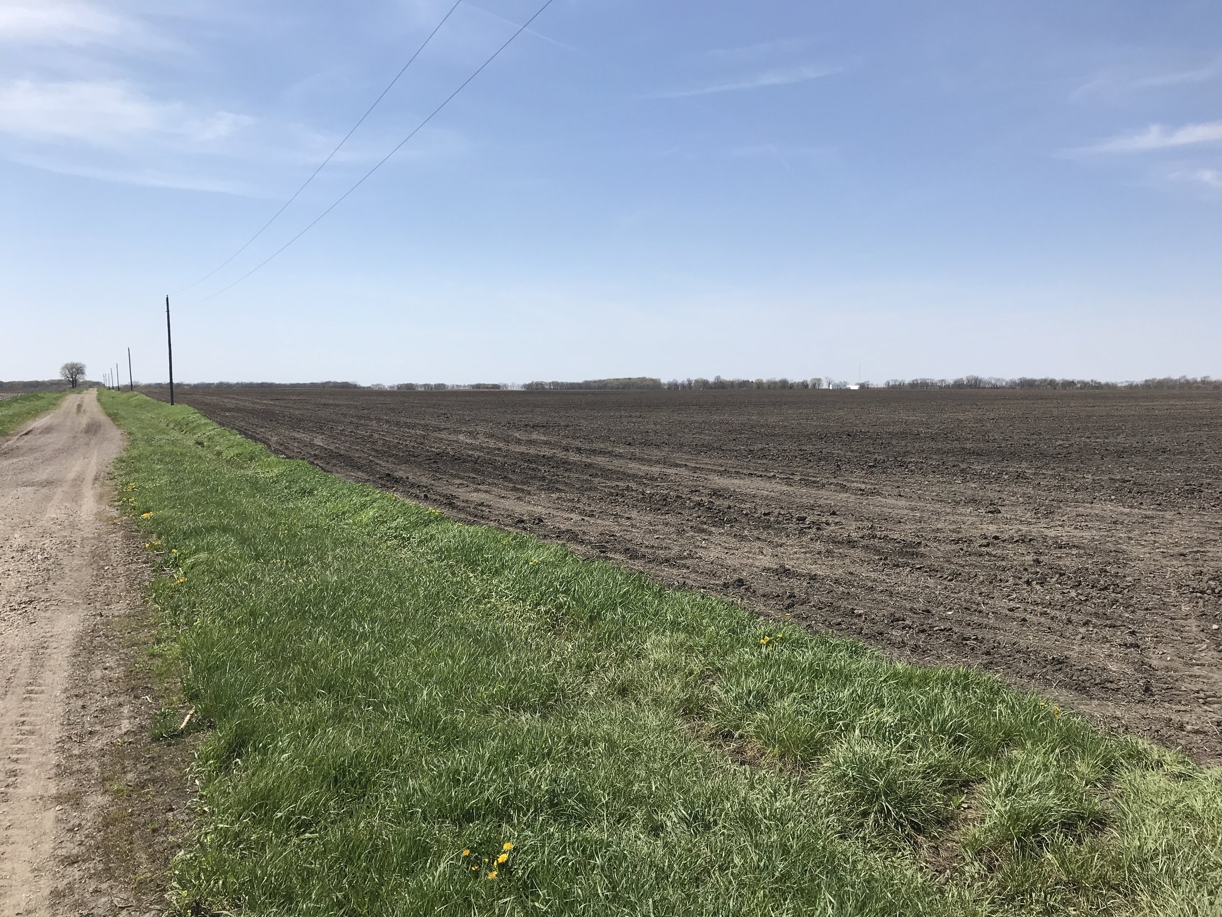 The Richards Family farmland from the southeast corner looking west.