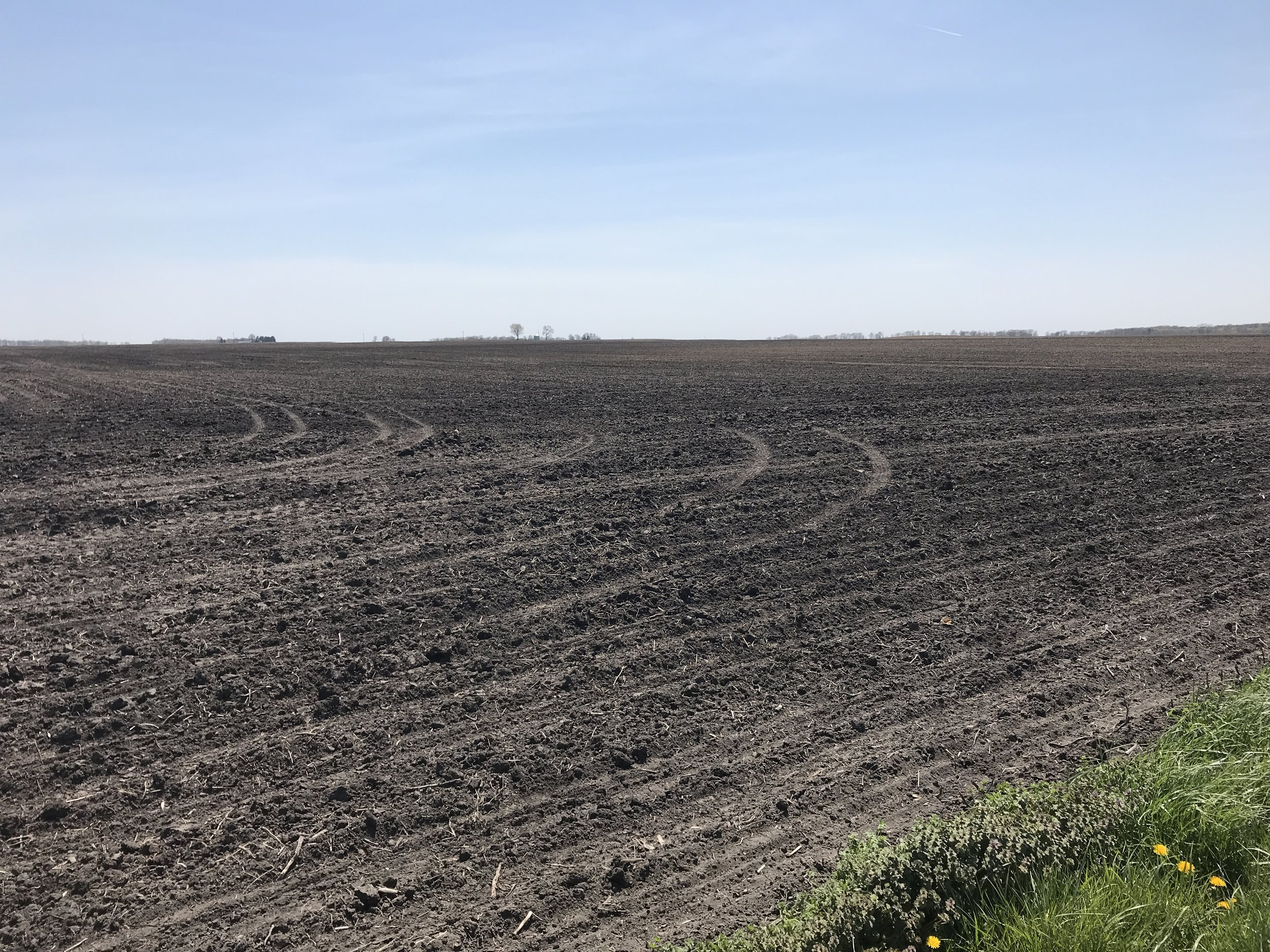 The Richards Family farmland from the northeast corner looking southwest.