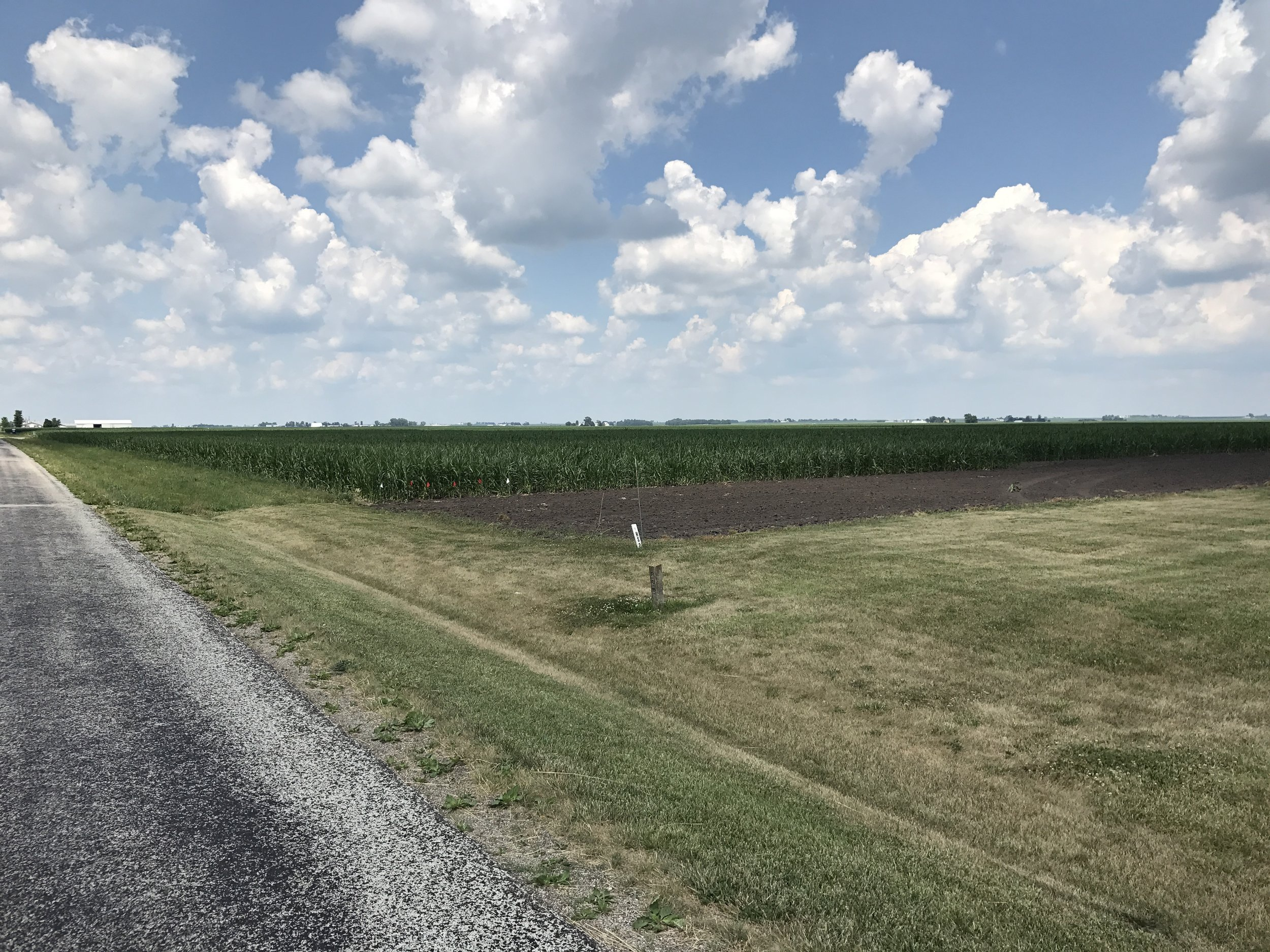 The south 80-acre tract of the Hunter Trust farm looking southeast from the building site.