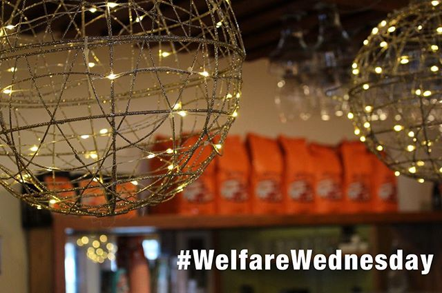 Today marks an important day for us at Mimosa.  It is the first of what we are calling #welfarewednesday.  Today's partners are our friends down the street at @hungertaskforce, who provide food for those Milwaukee families in need, especially this holiday season. Come in and if your bill is paid after 12 PM then 10% of every dollar will go to their efforts.  This is the kickoff for this event and we're excited to do it every week. Hope to see you today!