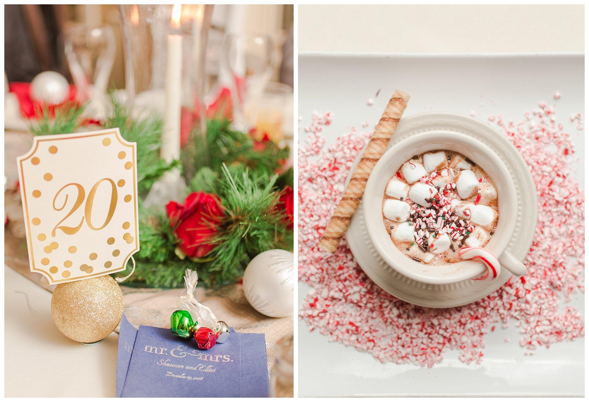 christmas-wedding-ohio_0051.jpg