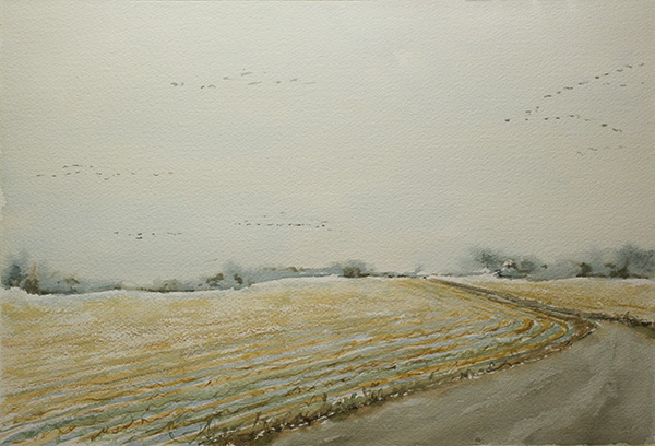 Geese Flying, January