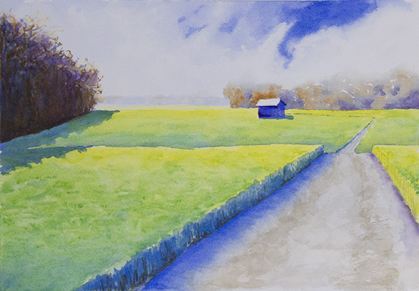SOLD Winter Wheat Field