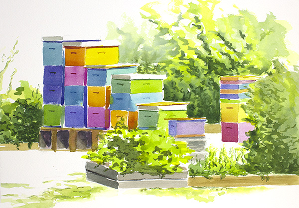 Robin's Beehives