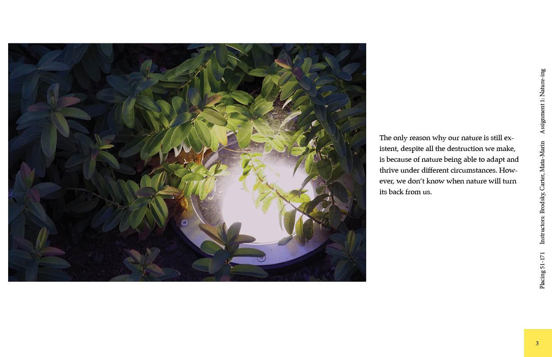 Choi, Ikjong Natureing3.jpg
