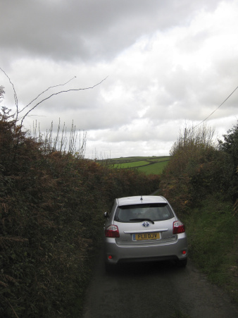 Hedgerow driving