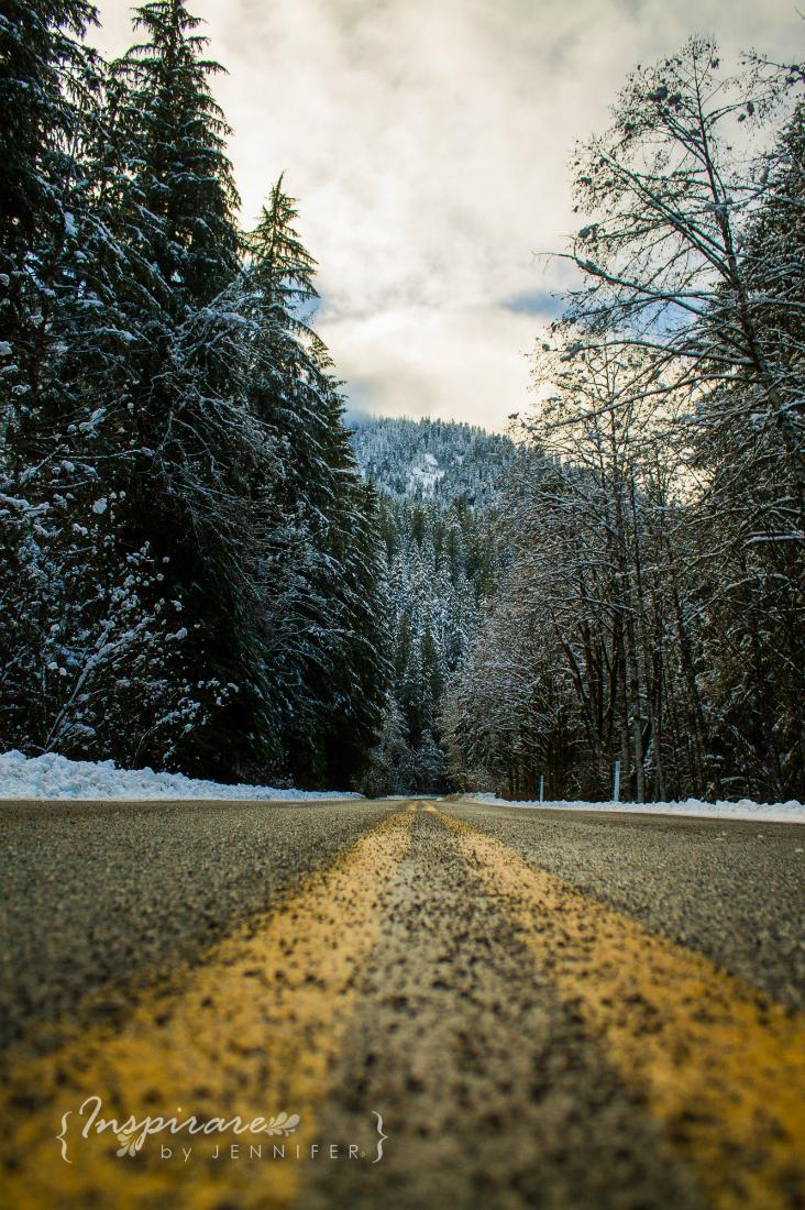 Snow-Watermark-732x1100-1011.jpg