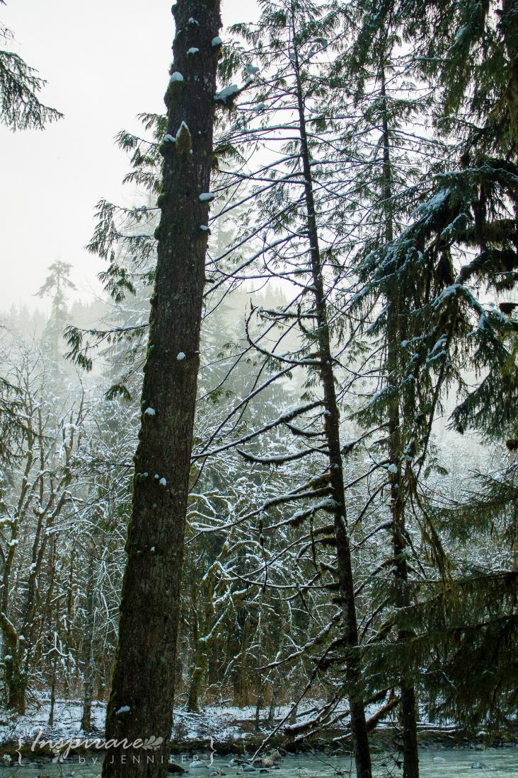 Snow 105
