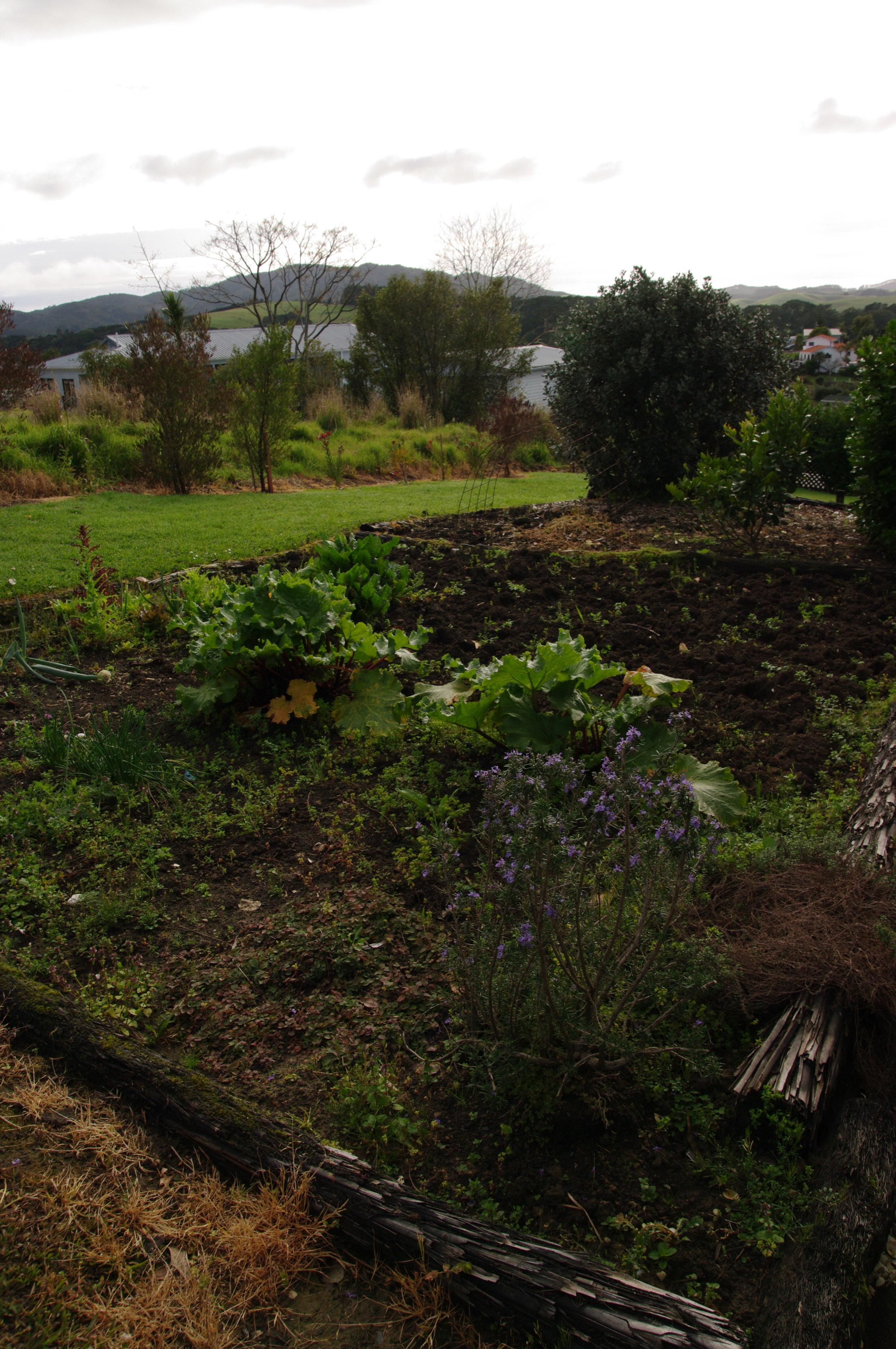 MBH kitchen garden.jpg