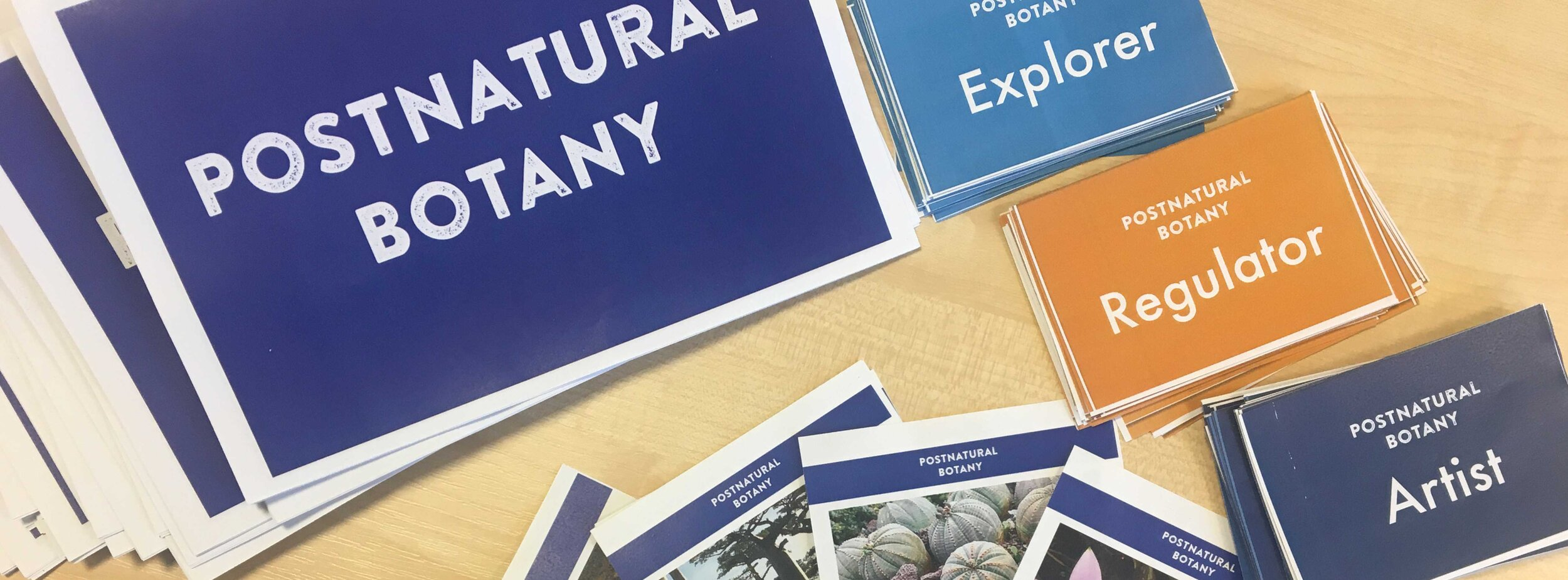 """""""POSTNATURAL BOTANY"""" RULES BOOKLET, PLANT DISCOVERY CARDS, AND ROLE-PLAYING CARS FOR """"EXPLORER"""", """"REGULATOR"""" AMD """"ARTIST"""". A COLLABORATIVE EFFORT BETWEEN KAREN INGRAM AND NICOLA PATRON FOR THE 4TH ANNUAL OPENPLANT FORUM. Photo: Karen Ingram"""