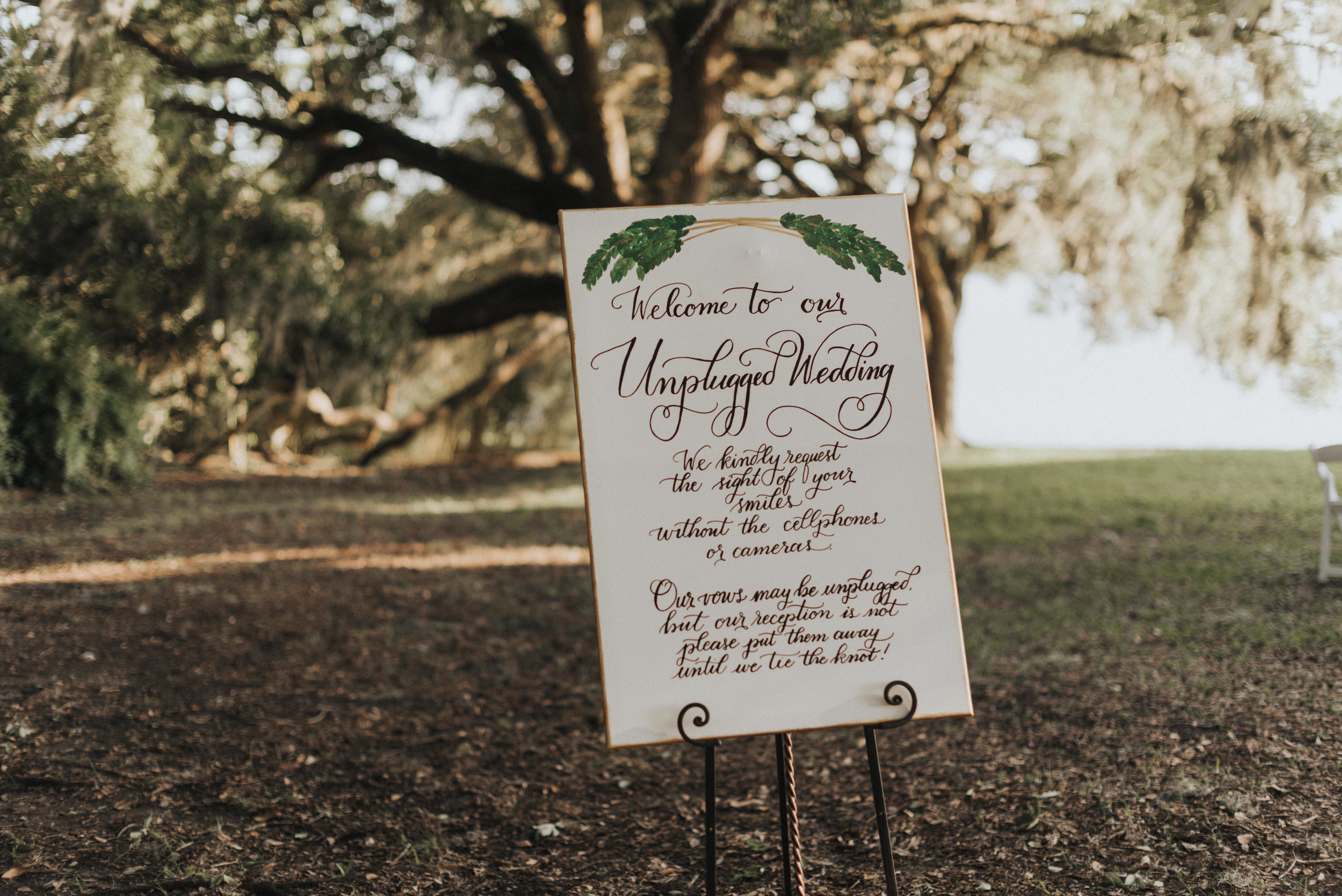 Southern Fete, Southern Wedding, Welcome Sign, St. Blanc Calligraphy