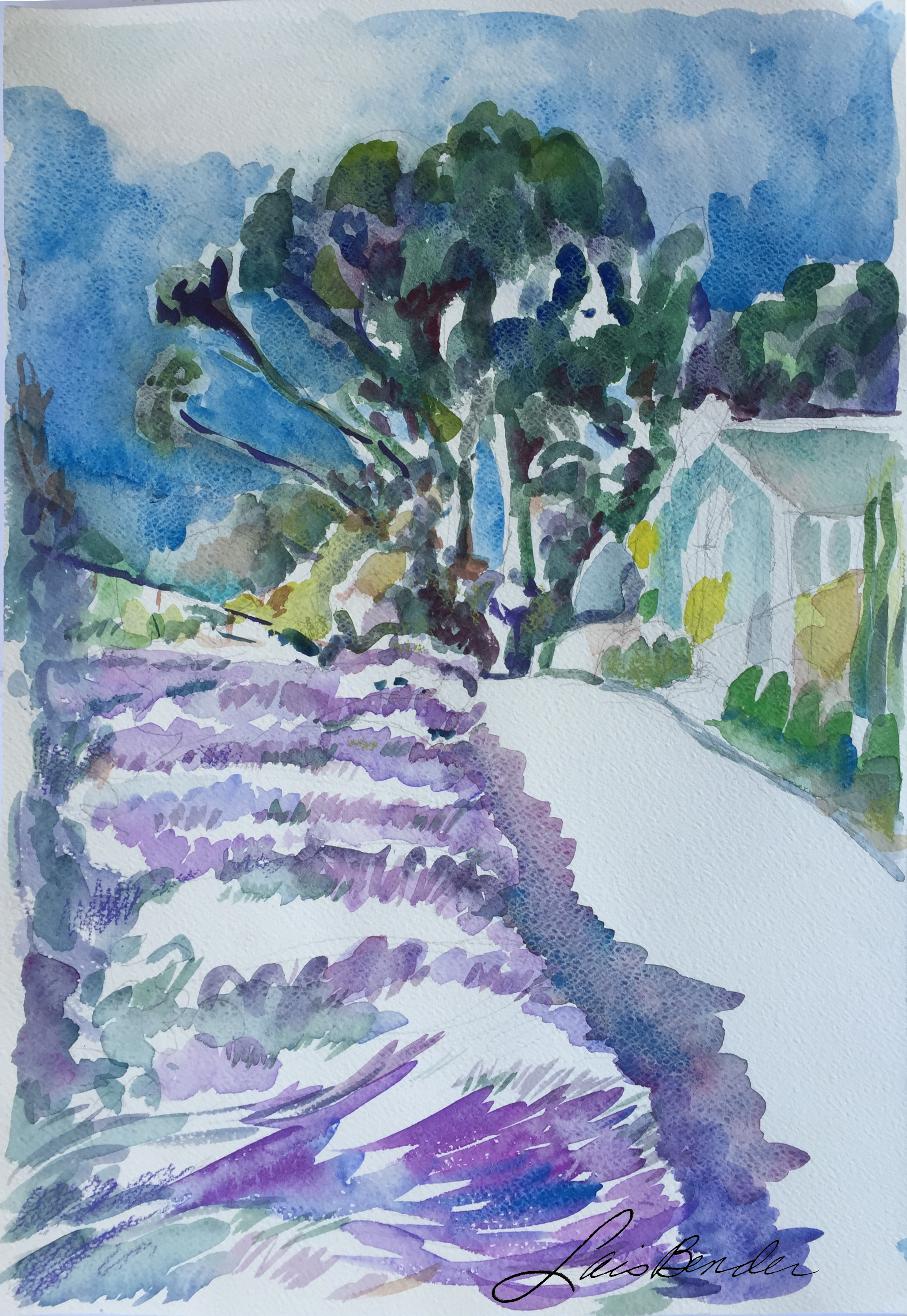 Lavender-Bender-1975.JPG