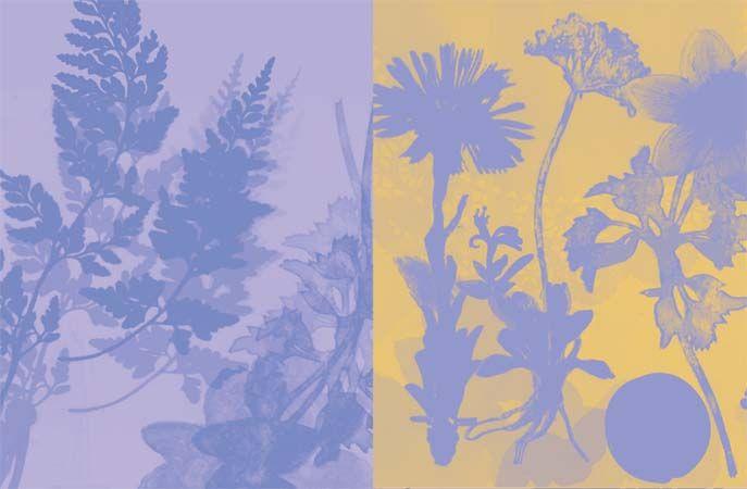 Resonates Image 8 from GardenSpirits.jpg
