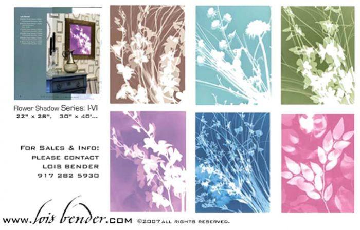 "Studio EL, Editions Limited Prints ""Flower Shadows"""