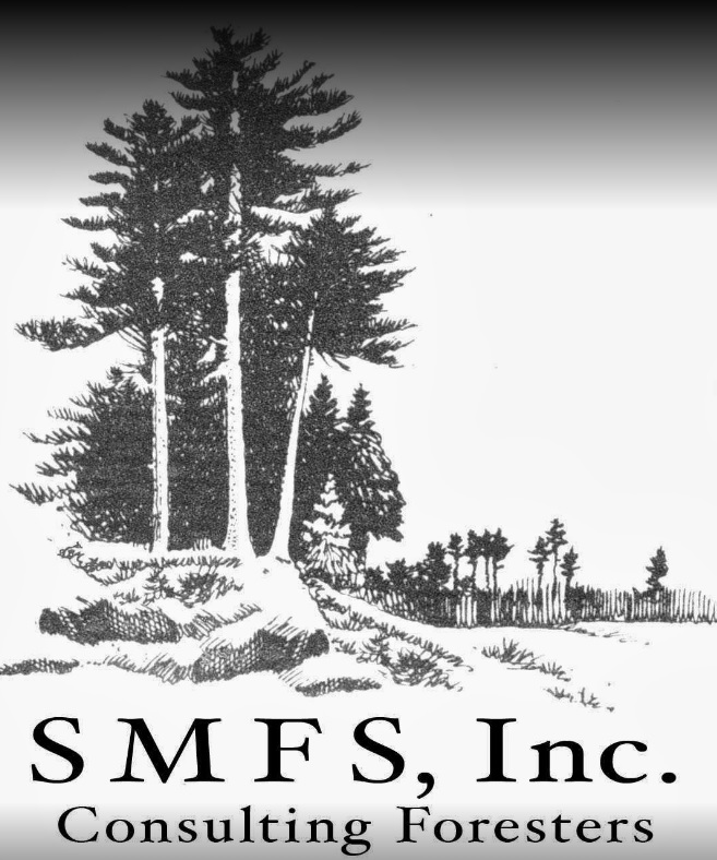 SMFS-ID.jpg