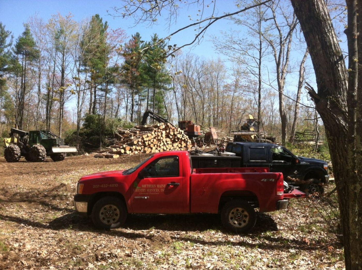 Timbersaleadministration.jpg