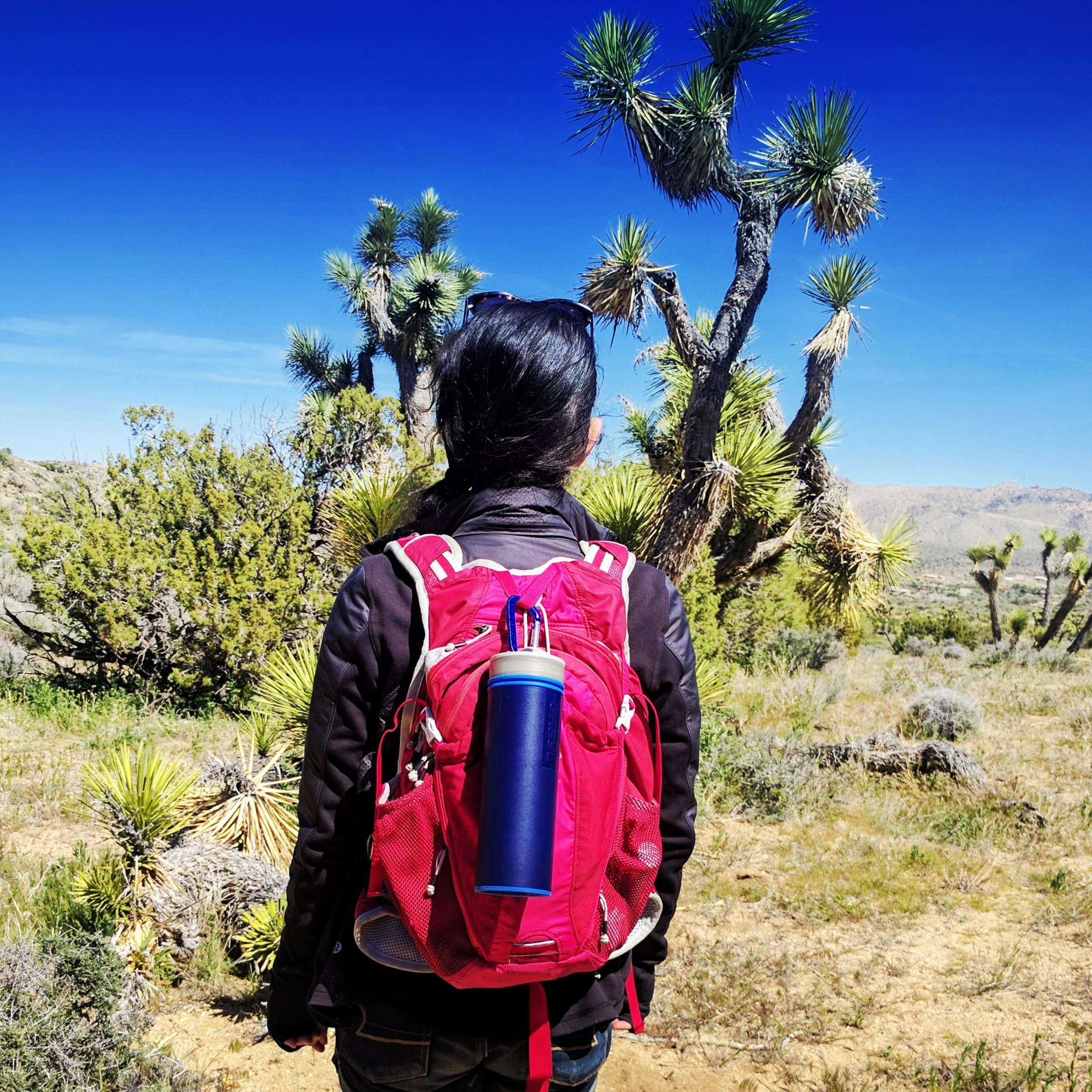 At Joshua Tree with my favorite water bottle the Grayl Filter Bottle