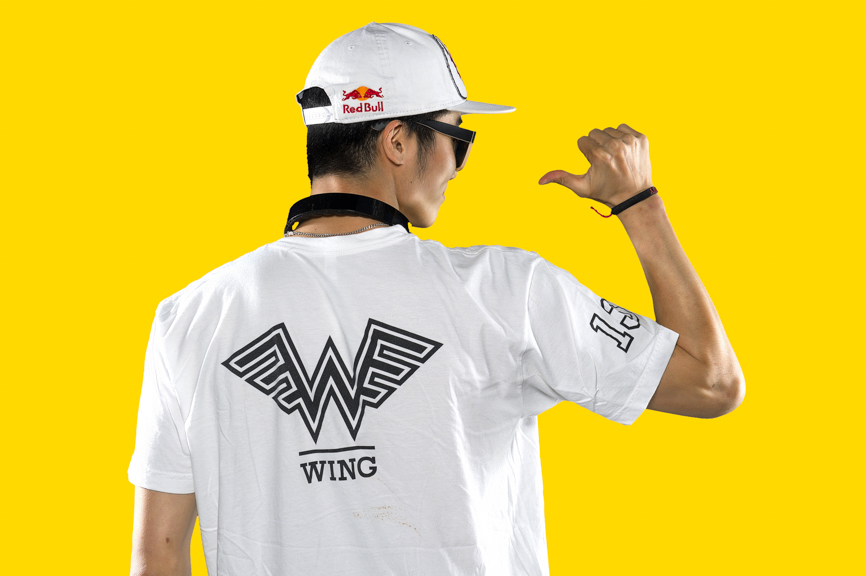 Gives you Wing.jpg