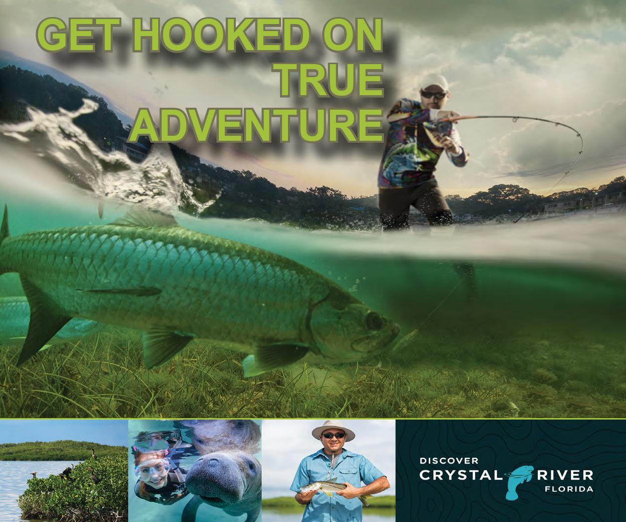 crysta river orange county web ad.jpg