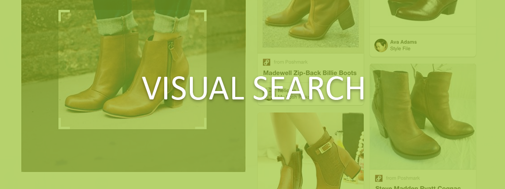 Visual Search.png