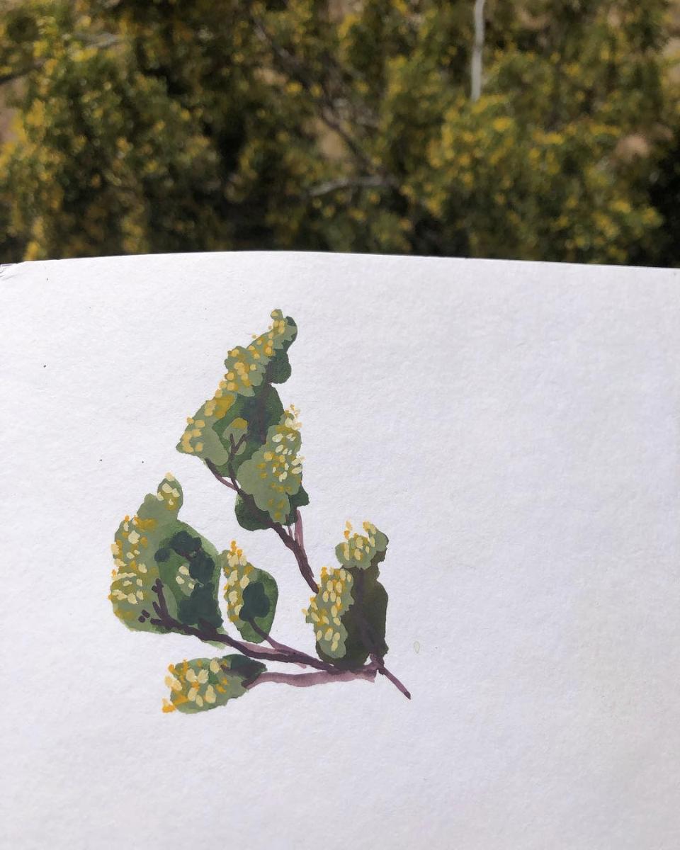 "Desert Flowers, Joshua Tree, Gouache, 6 x 4"" 2019."