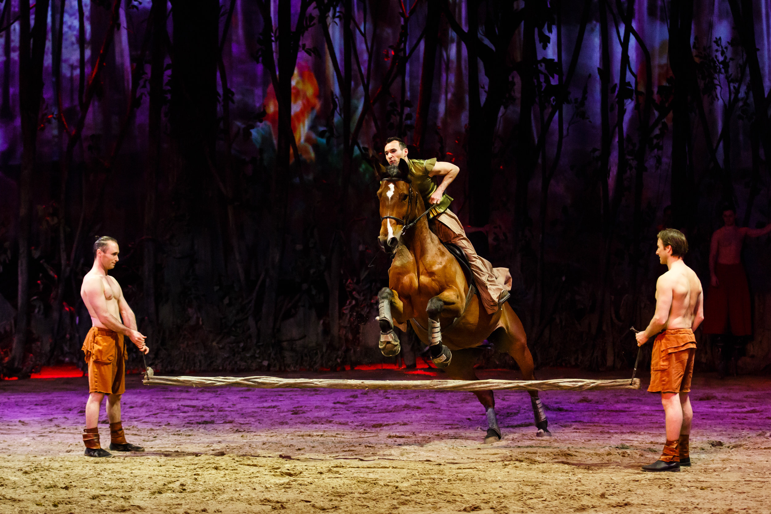 Chicago, IL - Odysseo by Cavalia - Opening Night 2.jpg
